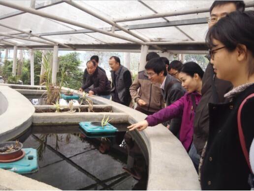 我院组织管理人员参观考察广西田园生化有限公司生产基地