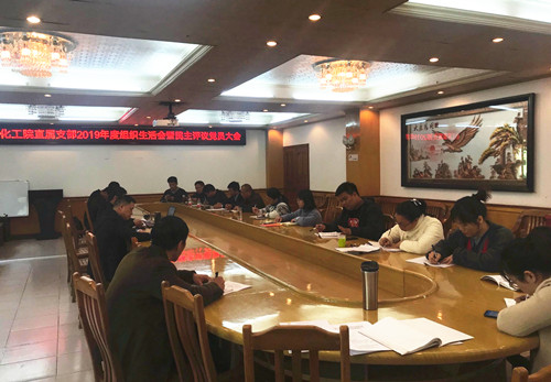 乐虎国际娱乐app下载院公司党委组织开展2019年度 民主评议党员工作