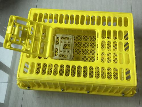 化纤所再添新产品——大型鸡笼